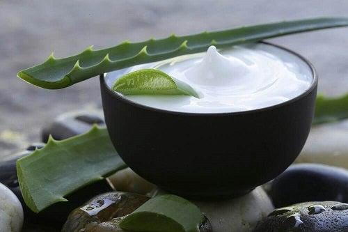 Lapte de cocos inclus în tratamente cu aloe vera pentru un păr mai sănătos