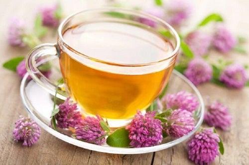 Valeriană inclusă în ceaiuri pentru un somn mai odihnitor