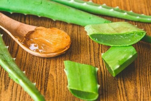 Aloe vera pentru măști cu gelatină pentru revitalizarea pielii