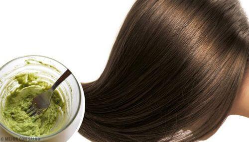 Avocado inclus în remedii naturiste pentru hidratarea părului