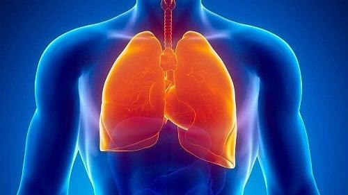 Cauze medicale ale transpirației nocturne care afectează plămânii