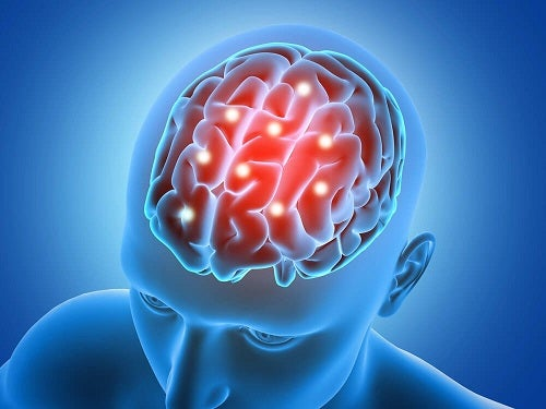 Creierul fortificat cu un măr verde pe stomacul gol