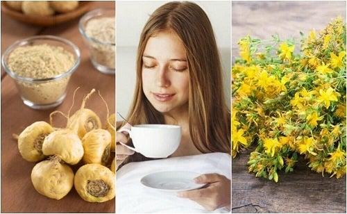 5 plante medicinale care măresc apetitul sexual