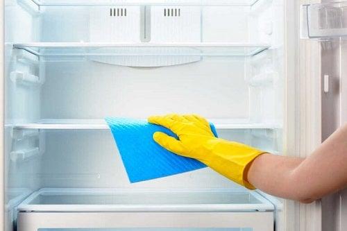 Frigider responsabil de mirosurile neplăcute din bucătărie