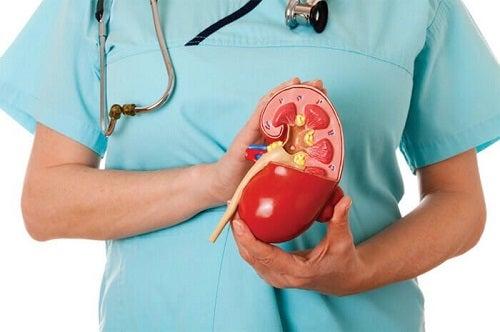 Medic vorbind despre organe de care nu ai nevoie ca să trăiești