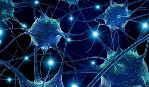 Prevenirea bolilor neurodegenerative pe lista de motive pentru a consuma fistic