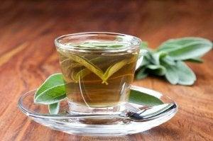 Salvia pe lista de remedii pentru prevenirea transpirației la subraț