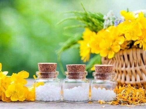 Arnică inclusă în remedii naturiste pentru flebită