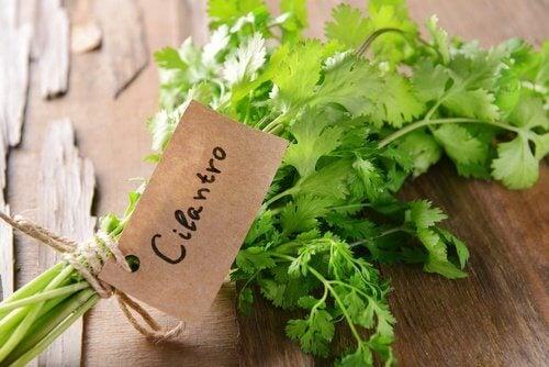 7 beneficii ale coriandrului pentru sănătate