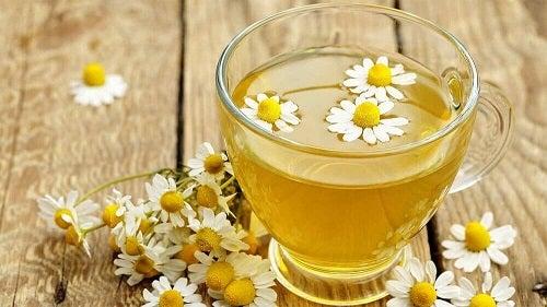 Ceaiul de mușețel pe lista de tratamente naturiste pentru glaucom