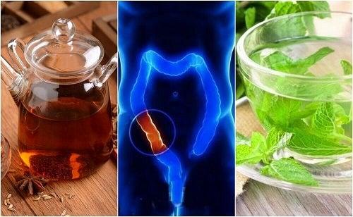 5 infuzii medicinale pentru curățarea colonului