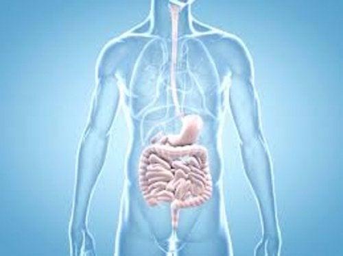 Intestine afectate de simptome inițiale ale cancerului