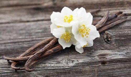 Parfumarea aerului din locuință cu vanilie
