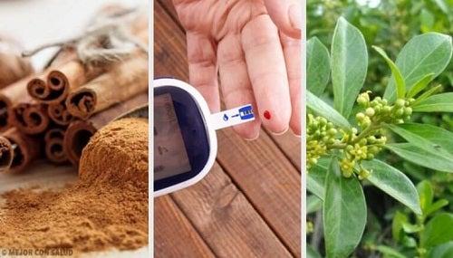 5 plante medicinale care luptă împotriva diabetului