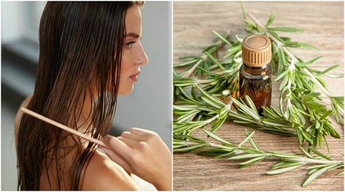 5 beneficii ale rozmarinului pentru păr