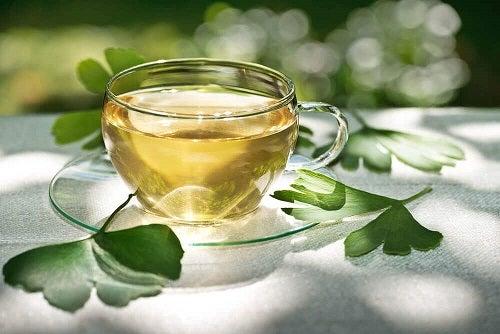 Remedii naturale care combatdegenerescența maculară cu ginkgo biloba