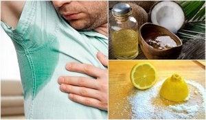 Dieta Volumetrics: slăbeşte sănătos fără să te înfometezi! - CSID: Ce se întâmplă Doctore?