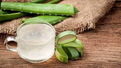 Remedii naturiste pentru tratarea gingivitei cu aloe vera