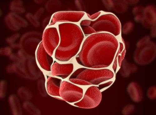 Structura unei celule de sânge