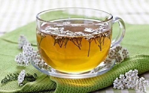 Ceai de plante ca remediu pentru lipsa poftei de mâncare la copii
