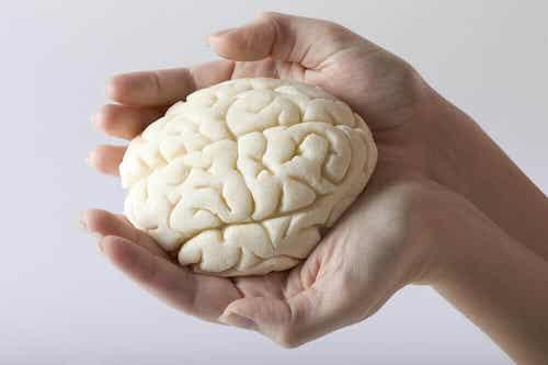 Cele mai bune 5 exerciții pentru memorie