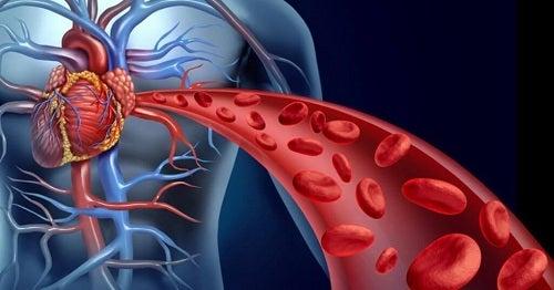 Circulație deficitară pe lista de probleme de sănătate la menopauză