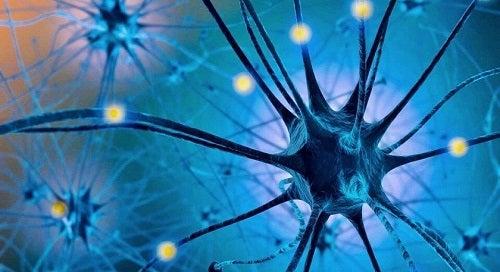 Dieta cu serotonină este benefică pentru creier