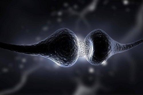 Dieta cu serotonină: în ce constă și care sunt efectele sale