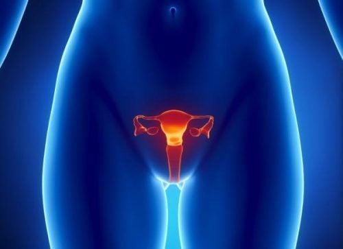 Cum se detectează cancerul ovarian?