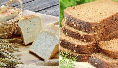 Pâinea albă sau pâinea integrală: care este mai bună?