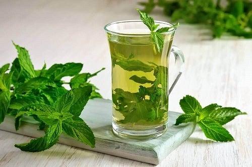 Remedii naturale pentru vertij precum ceaiul de mentă și izmă bună
