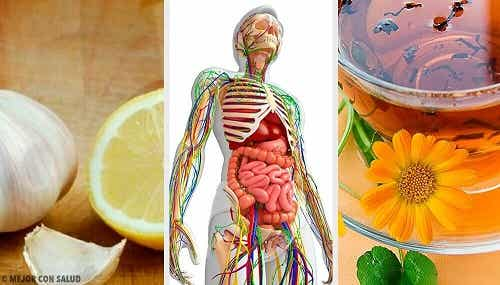 6 remedii pentru detoxifierea sistemului limfatic