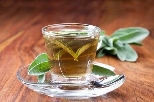 Semne care indică prezența plăcii în gât ameliorate cu ceai de salvie