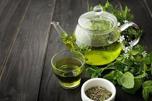 Alimente care ard grăsimile precum ceaiul verde