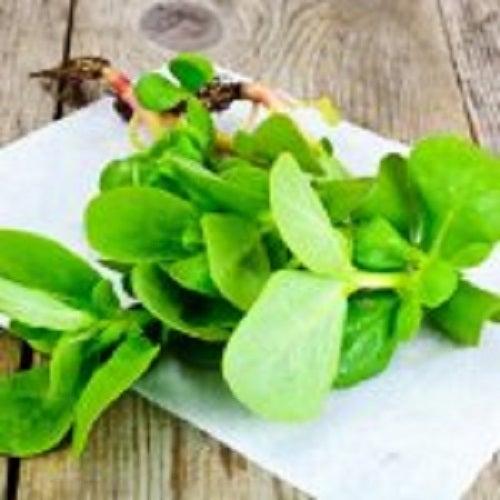 Beneficii oferite de iarba grasă când este adăugată în mâncare