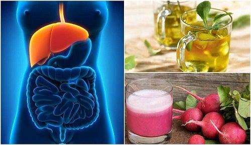 Cum să tratezi ficatul gras în mod natural