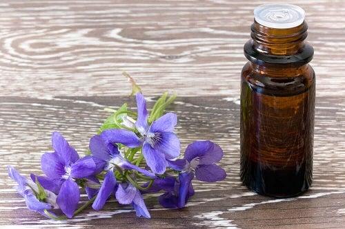 Flori albastre pentru terapia florală Bach