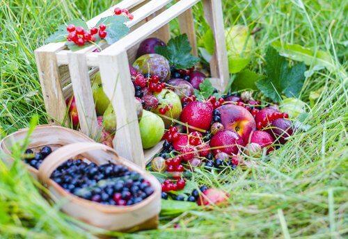 Fructele de pădure sunt alimente care stimulează producția de colagen