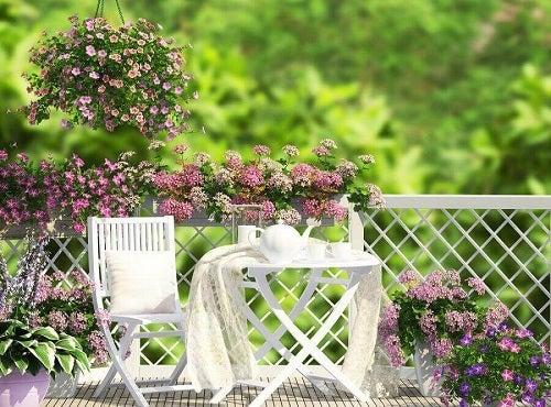Ghidul grădinii urbane cu mobilier de grădină și flori