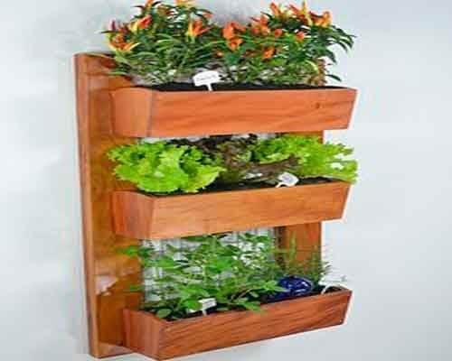 Ghidul grădinii urbane presupune un raft vertical de plante