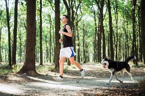 Joggingul pe lista de exerciții pentru tonifierea picioarelor