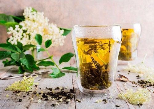 Plante medicinale împotriva tusei productive precum floarea de soc