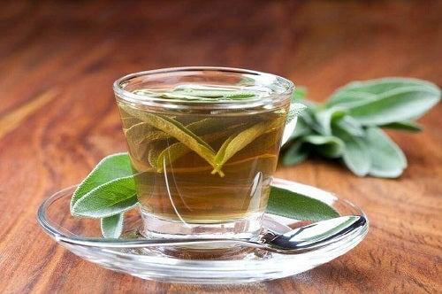 Remedii pentru dureri de gât cu ceai de salvie