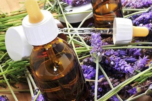 Terapia florală Bach cu flori de lavandă