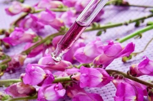 Terapia florală Bach administrată prin picături