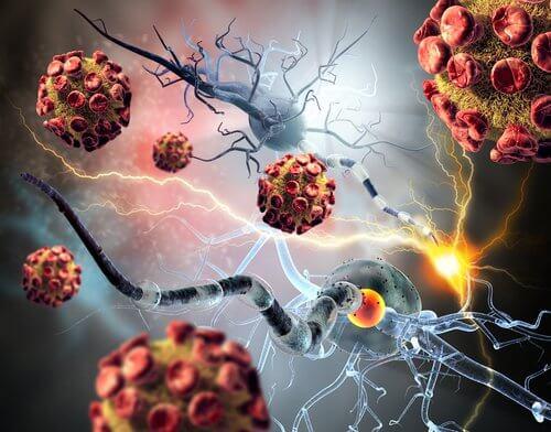 Vaccinul împotriva tumorilor canceroase ce distruge celule anormale