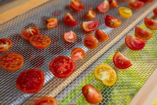 Cum să faci un deshidrator solar care usucă roșiile