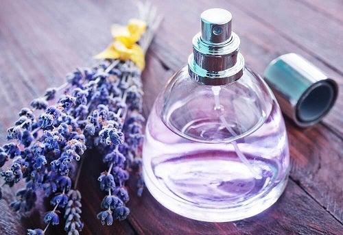 Soluții naturale împotriva acarienilor preparate cu lavandă
