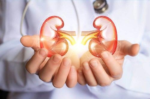 Încearcă o dietă detoxifiantă pentru rinichi