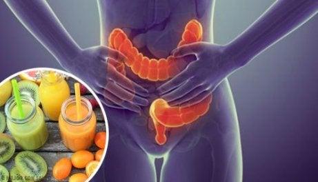 Detoxifierea colonului cu suc de mere